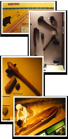 Exhibits-montage