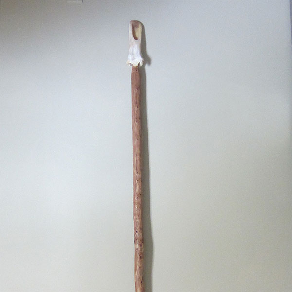 Bison Bone Tipped Digging Stick
